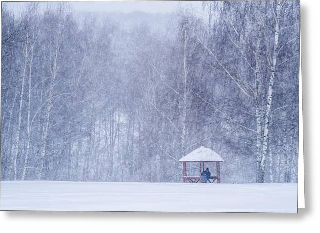 Park Scene Greeting Cards - Shelter In The Storm - Featured 3 Greeting Card by Alexander Senin