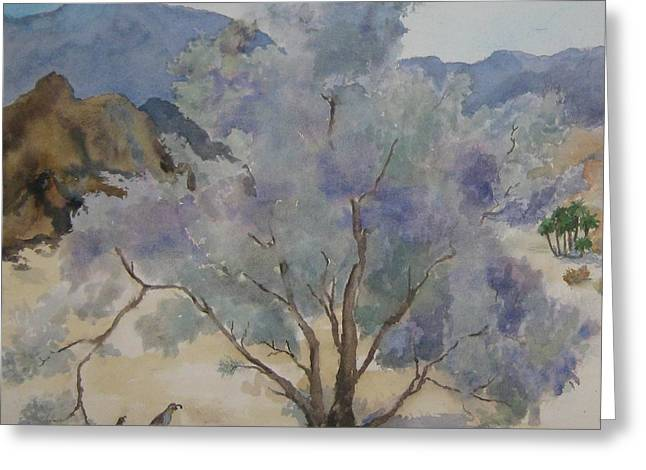 Smoketree In Bloom Greeting Card by Maria Hunt