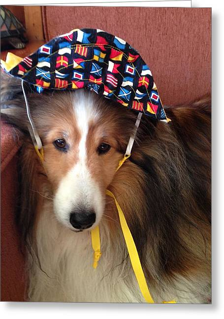 Puppy Pyrography Greeting Cards - Sheltie Sailor  Greeting Card by Hayley Holzhacker