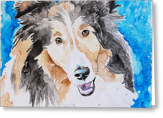 Yupo Paper Greeting Cards - Sheltie Greeting Card by Shaina Stinard