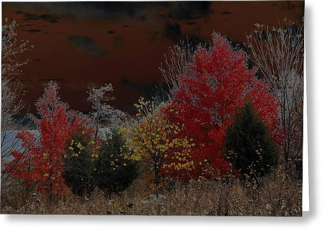 Carolyn Stagger Cokley Greeting Cards - Shenandoah Autumn Greeting Card by Carolyn Stagger Cokley