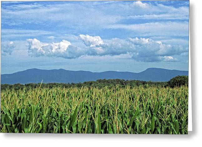 Field. Cloud Greeting Cards - Shenandoah Corn  Greeting Card by Lara Ellis