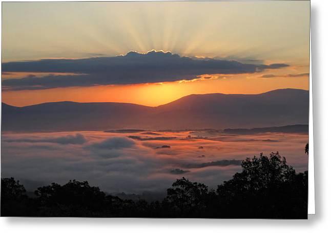 Shenandoah Greeting Cards - Shenandoah Morning Sunrise Fog  Greeting Card by Lara Ellis