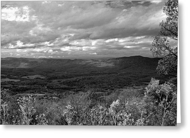 Carolyn Stagger Cokley Greeting Cards - Shenandoah Splendor Bw Greeting Card by Carolyn Stagger Cokley