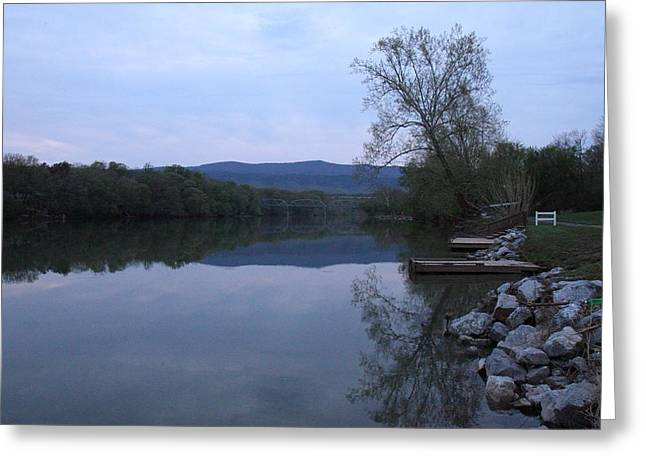 Tree Greeting Cards - Shenandoah Valley - 011315 Greeting Card by DC Photographer
