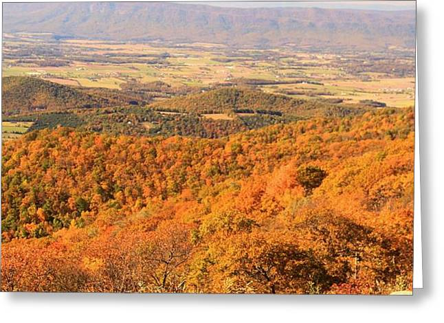 Shenandoah National Park Greeting Cards - Shenandoah Valley In Autumn Greeting Card by Dan Sproul