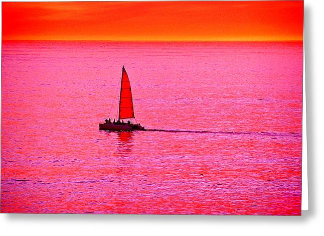 Ocean. Reflection Greeting Cards - Sherbert Sunset Sail Greeting Card by Michael Durst