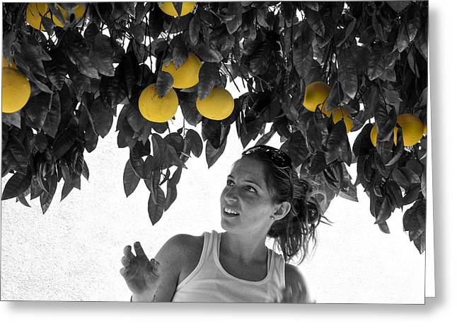 Gleaning Greeting Cards - Shes got her eye on a grapefuit Greeting Card by Rebecca Dru