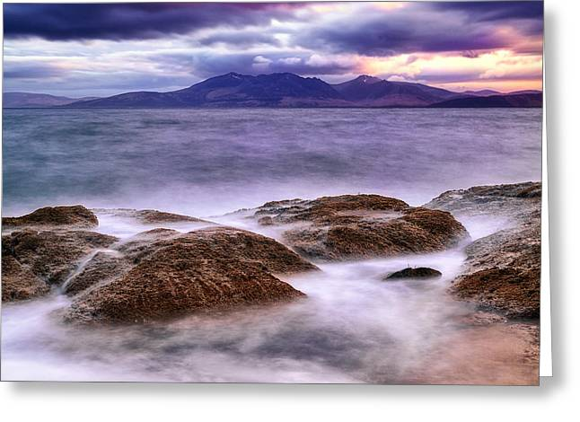Ayrshire Greeting Cards - Shhhhh Greeting Card by John Farnan