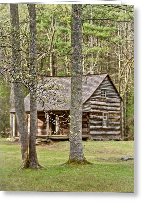 Smoky Pyrography Greeting Cards - Shields Cabin Greeting Card by Lori Douthat