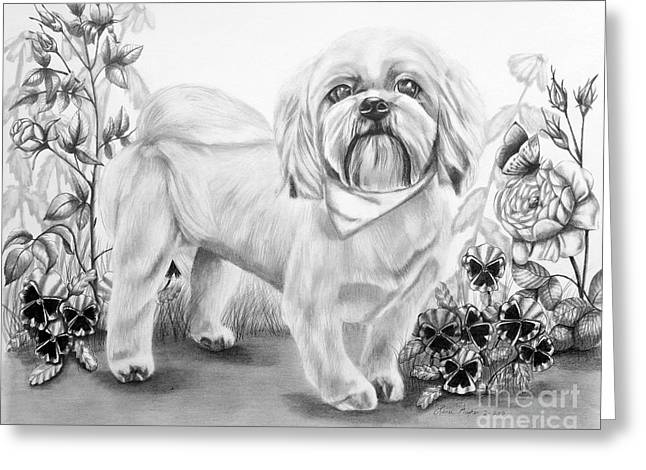 Puppies Drawings Greeting Cards - Shih Tzu in Black and White Greeting Card by Lena Auxier