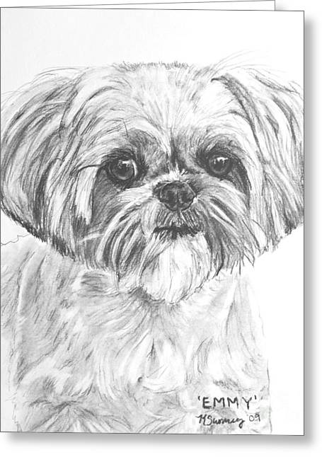 Rescue Drawings Greeting Cards - Shih Tzu Portrait in Charcoal Greeting Card by Kate Sumners