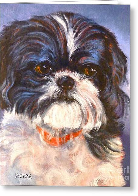 Toy Dog Drawings Greeting Cards - Shih Tzu Rescued Greeting Card by Susan A Becker