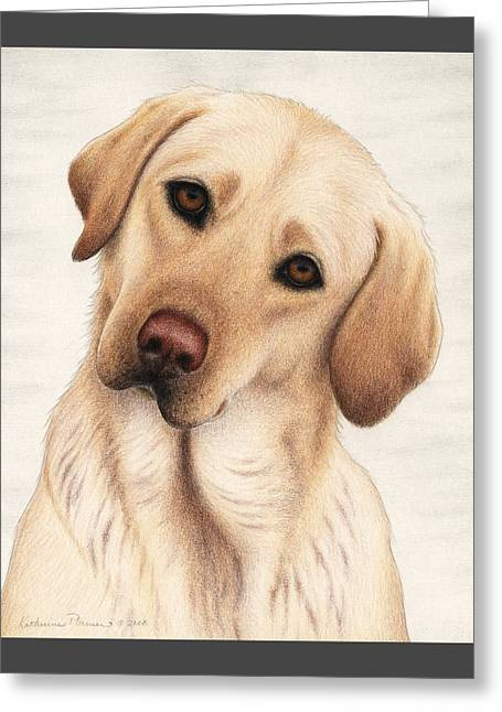 Labs Drawings Greeting Cards - Shiloh Greeting Card by Katherine Plumer