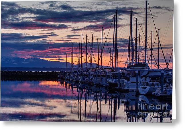 Shilshole Olympic Mountains Sunset Greeting Card by Mike Reid