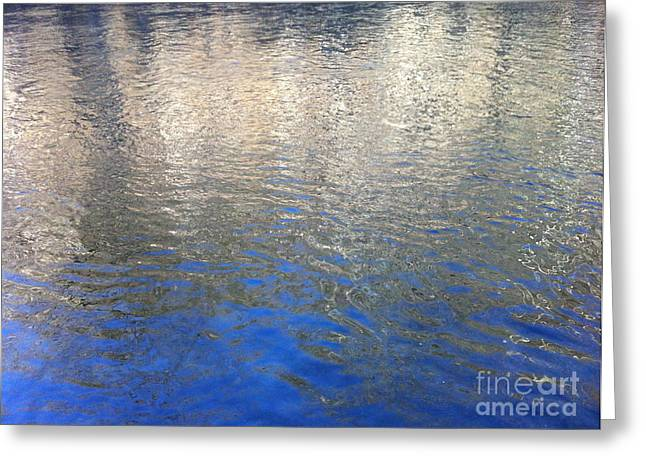 Gold Trout Greeting Cards - Shimmering Gold Greeting Card by Mark Messenger