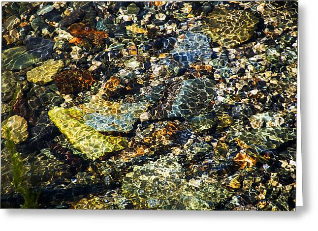 Babbling Greeting Cards - Shimmering Pebbles Greeting Card by Tracey Davidson