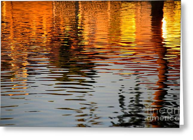 Reflection In Water Greeting Cards - Shimmering Waters Greeting Card by Deb Halloran