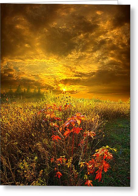 Hike Greeting Cards - Shine Your Light for the World to See Greeting Card by Phil Koch