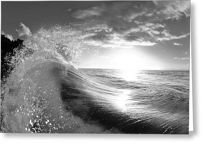 Surf Photos Art Greeting Cards - Shiny Comforter Greeting Card by Sean Davey