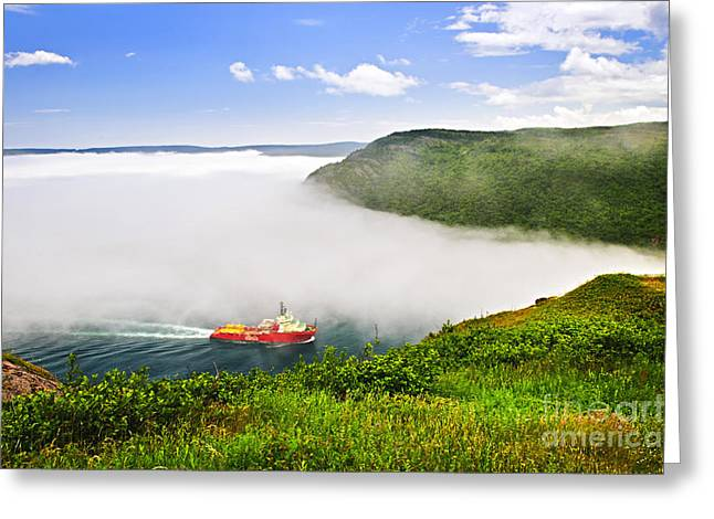 Lookout Greeting Cards - Ship entering the Narrows of St Johns Greeting Card by Elena Elisseeva
