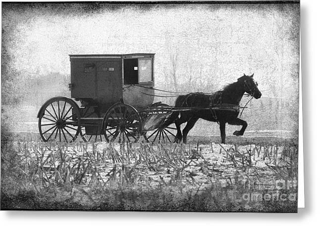 La Grange Greeting Cards - Shipshe Buggy Greeting Card by David Arment