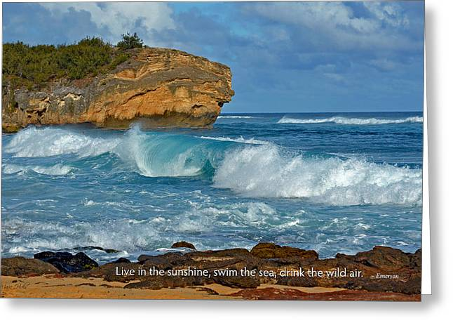 Lithified Greeting Cards - Shipwreck Beach Shorebreaks 2 Greeting Card by Marie Hicks