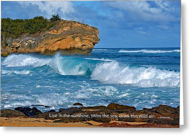 Lithified Greeting Cards - Shipwreck Beach Shorebreaks Greeting Card by Marie Hicks