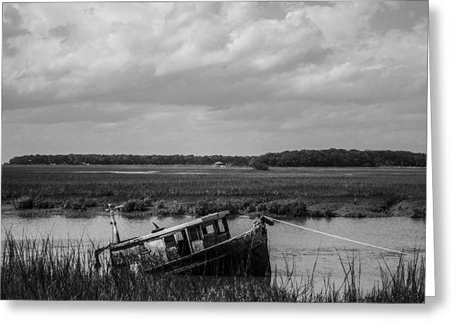 Shipwrecked  Greeting Card by Steven  Taylor