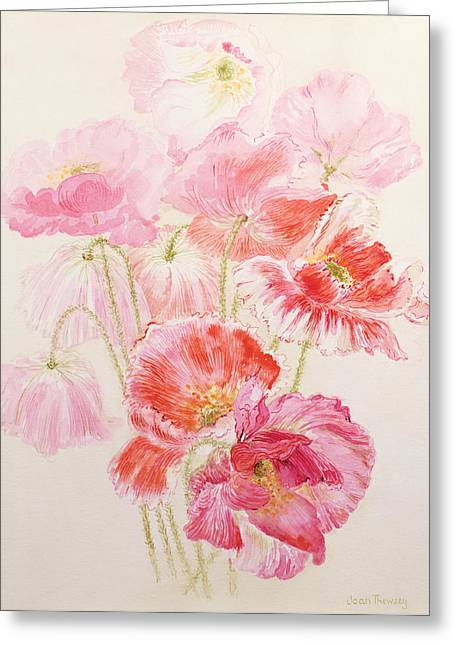 Flower Still Life Greeting Cards - Shirley Poppies Greeting Card by Joan Thewsey