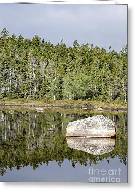 Serenity Scenes Greeting Cards - Shoal Pond - White Mountains New Hampshire Greeting Card by Erin Paul Donovan