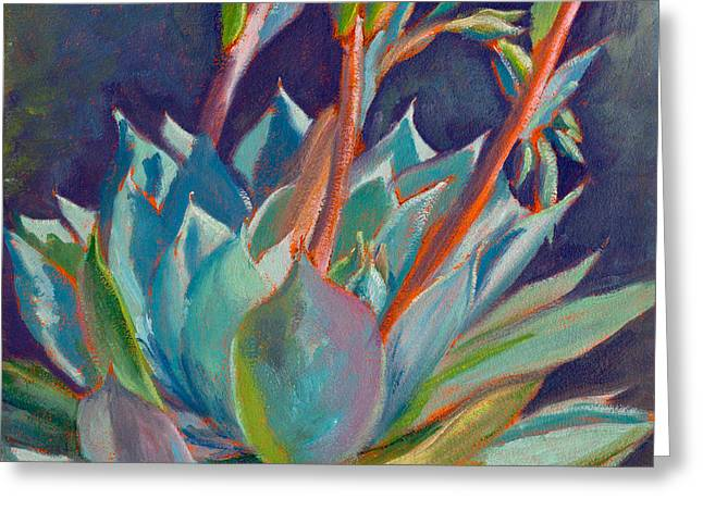 Succulents Greeting Cards - Shooting Off Rainbows Greeting Card by Athena Mantle