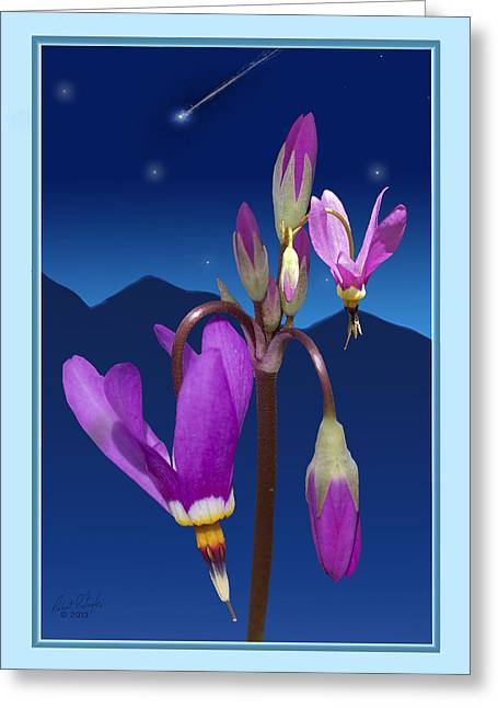 Floral Digital Art Digital Art Greeting Cards - Shooting Star Greeting Card by Taylor Visual Arts