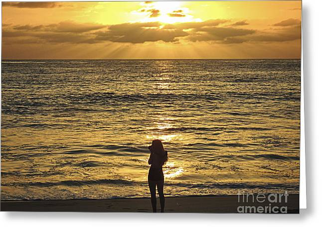 Sunset Greeting Cards Greeting Cards - Shooting the Sunset Greeting Card by L J Oakes