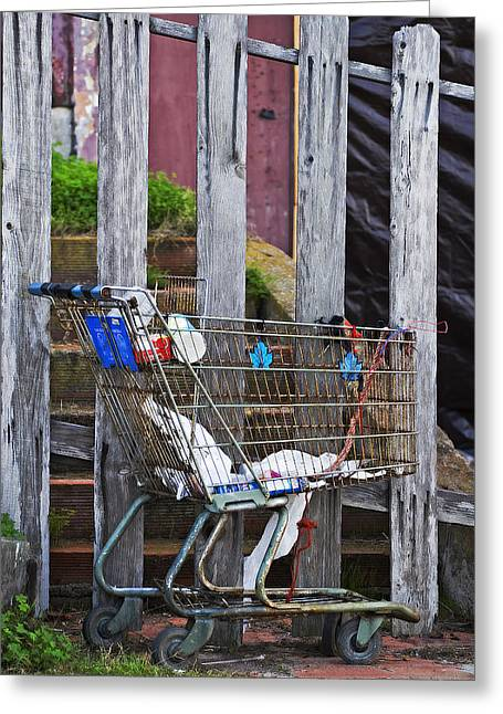 Shopping Cart Greeting Cards - Shopping Cart Greeting Card by Peter Tellone