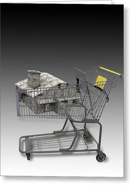Shopping Cart Greeting Cards - Shopping Cart With House Of Money Greeting Card by Mike Agliolo