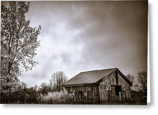 Rusty Tin Roof Greeting Cards - Shops closed BW Greeting Card by Chris Bordeleau