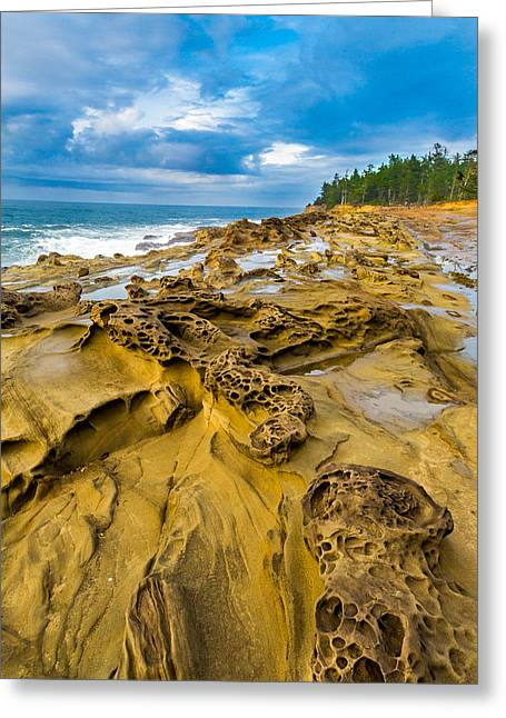 Ocean Shore Greeting Cards - Shore Acres Sandstone Greeting Card by Robert Bynum