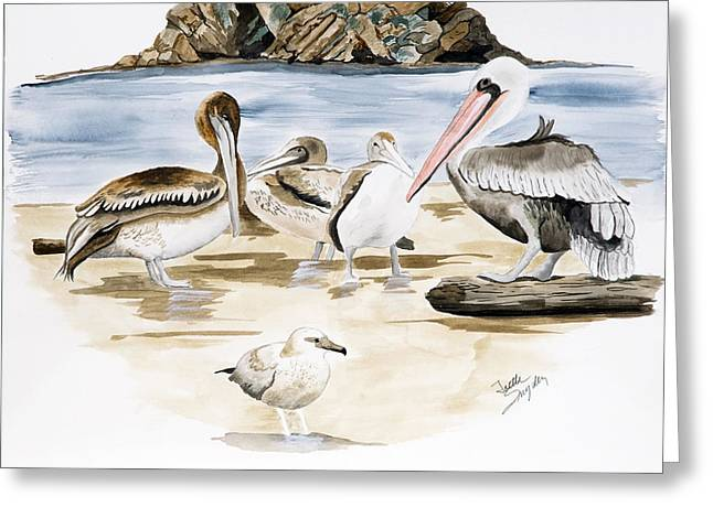 Shore Birds Greeting Card by Joette Snyder