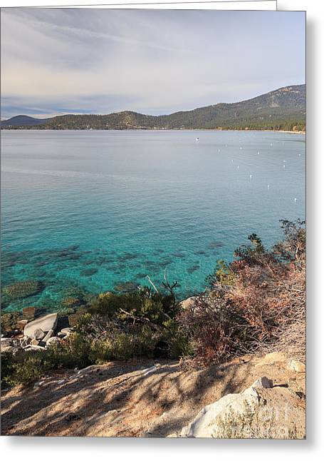 Tahoe National Forest Greeting Cards - Shore of Lake Tahoe Greeting Card by Jannis Werner