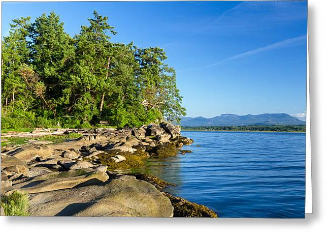 Shoreline At Biggs Park Greeting Card by Michael Russell