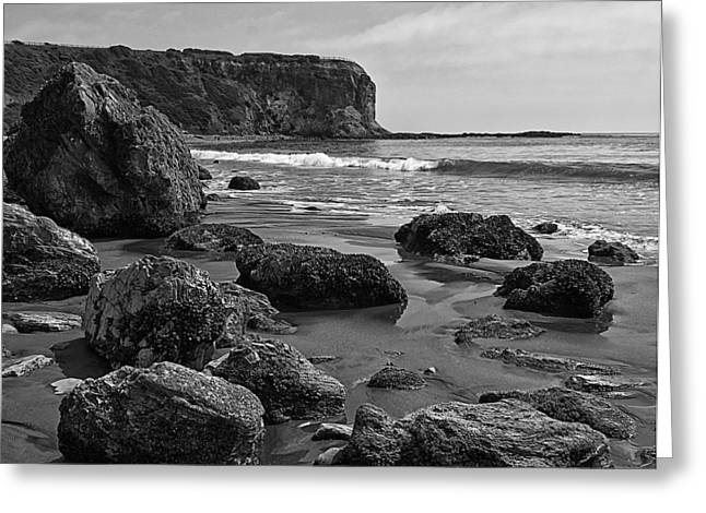 Abstract Beach Landscape Greeting Cards - Shoreline Near Abalone Cove Greeting Card by Ron Regalado