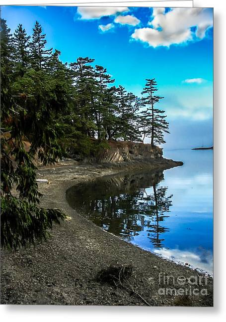 Shoreline Greeting Card by Robert Bales
