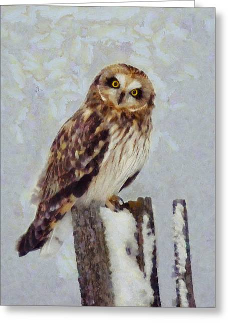 Look Mixed Media Greeting Cards - Short-eared Owl   Greeting Card by Mark Kiver