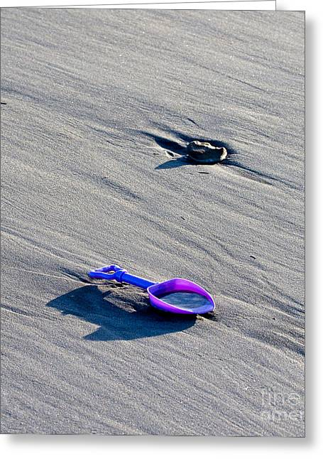 Maine Beach Greeting Cards - Shovel Greeting Card by Steven Ralser