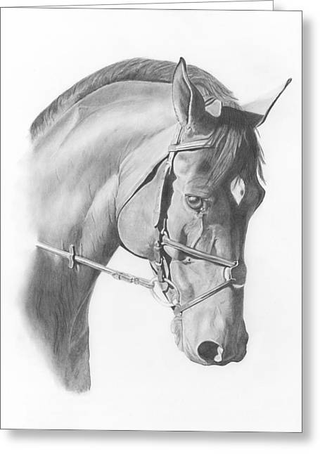 Headshot Drawings Greeting Cards - Show Jumper Greeting Card by Lisa Hufnagel