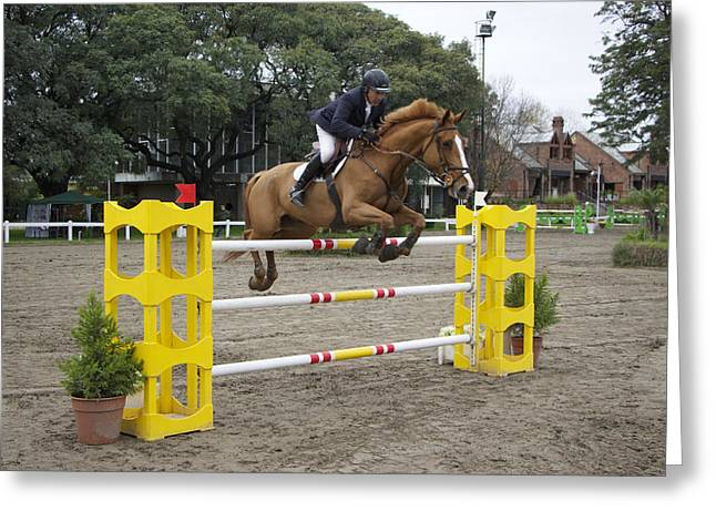 Showjumping Greeting Cards - Show Jumping in Argentina Greeting Card by Venetia Featherstone-Witty