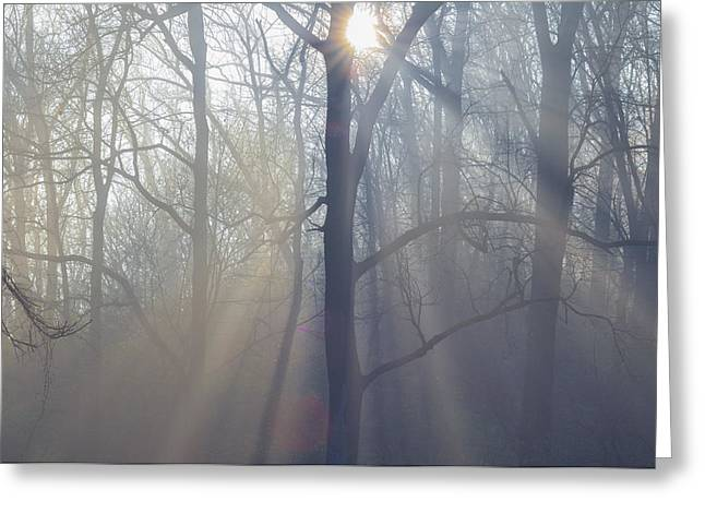 The Sun God Greeting Cards - Show me the Way Greeting Card by Bill Cannon