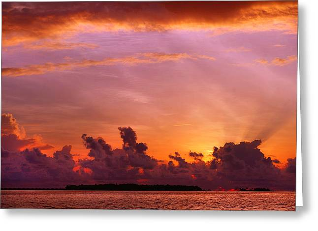 Tropical Island Greeting Cards - Show Must Go On. Tropical Sunset Greeting Card by Jenny Rainbow