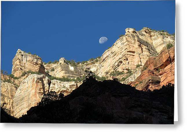 South Kaibab Trail Greeting Cards - Showing The Way Out Greeting Card by Charles Ables